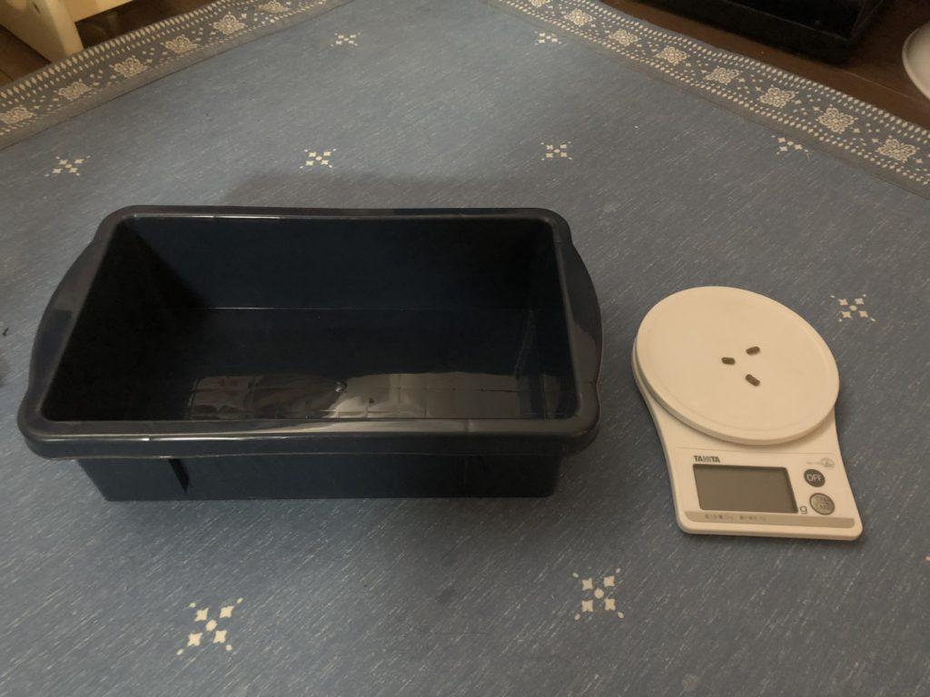 ネザーランドドワーフの体重測定1